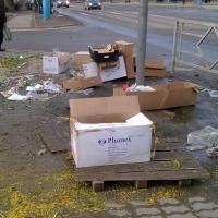 В Октябрьском округе Омска выписано 1250 уведомлений о нарушениях чистоты