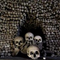 В Омской крепости при реконструкции обнаружены человеческие кости