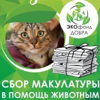 Омичи могут помочь животным, просто отдав ненужную бумагу