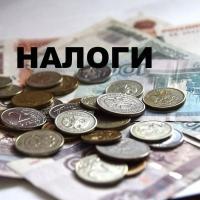 Средний и малый бизнес Омской области в 2016 году заплатил 17 миллиардов налогов