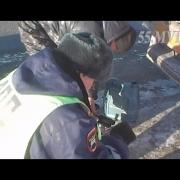 Омские инспекторы спасли водителя фуры от замерзания