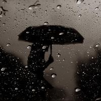 В конце недели омичей ждут дожди