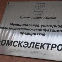 """В совет директоров """"Омскэлектро"""" вошли Фролов и Парыгина"""