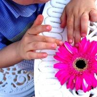 Омским детям устроят цветочные мастер-классы на день города