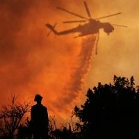 На севере Омской области бушует крупный пожар на болотах