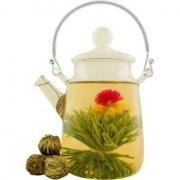Международный день чая прошёл на омской земле