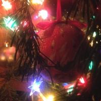 Главная елка города зажжет огни для омичей 25 декабря