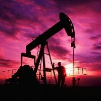 Mubadala Petroleum оценит нефтяное месторождение в Омской области