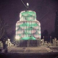 В Омске состоялось торжественное открытие главной городской елки