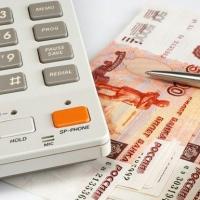 В Омске будут судить бухгалтера, похититившую 100 тысяч рублей у садоводов