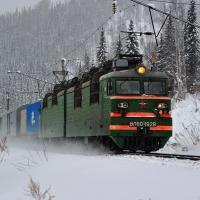 Под Калачинском омичка погибла под колесами поезда