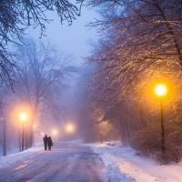 Суд Омской области помог тарчанам осветить улицы