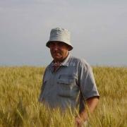 """КФХ """"Горячий Ключ"""" признано лучшим фермерским хозяйством в России"""