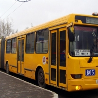 Реклама на транспорте принесла бюджету Омска 1,1 млн рублей