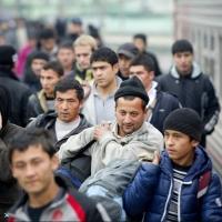 Омич нелегально привез из Казахстана 19 узбеков