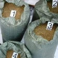 В Омской области у сельчан изъяли более 18 килограммов марихуаны