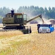 В Омской области засеют почти 3 миллиона гектаров земли