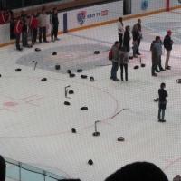 Болельщики «Авангарда» могут не увидеть свою команду в Омске