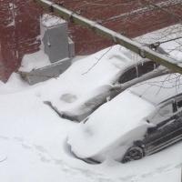 Двораковский про снежный коллапс 22 октября: мы не ожидали такого циклона