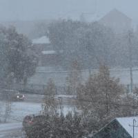 Ноябрь в Омской области завершится снегами и метелями