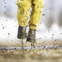 На выходных в Омской области ожидается до +9 градусов и дождь