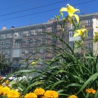 Последний теплый день лета в Омской области выпал на понедельник