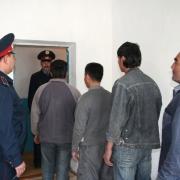 В Омске возросло число преступлений с участием иностранных граждан