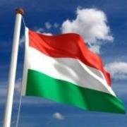 Венгры присмотрелись к Омску