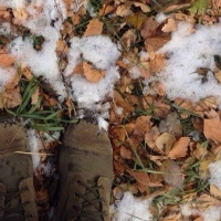 В Омской области ожидаются заморозки до минус трех градусов