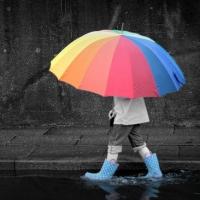 В Омске дожди очистили воздух от вредных примесей
