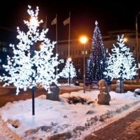 Новогоднее оформление Омска завершат к 15 декабря