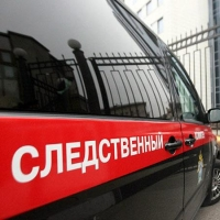 Житель Омской области до смерти забил бабушку, кричавшую на детей