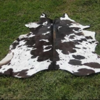 Пограничники не пустили в Омскую область 23 тонны коровьих шкур
