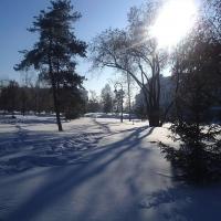 В Омске морозы смягчатся к концу недели
