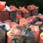 Собранный в Омске мусор направят на переработку