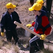 В Омской теплице незаконно заставляли работать детей