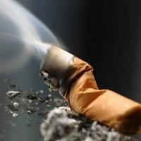 В Омской области отец с сыном погибли в пожаре из-за непотушенных сигарет