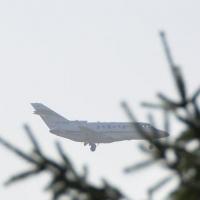 Омичи смогут летать по льготным билетам в Симферополь