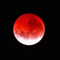 В ночь с 7 на 8 августа омичи увидят «кровавую» луну
