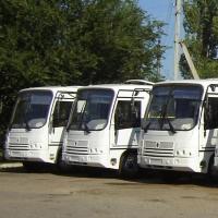 Мэр Омска Оксана Фадина проехала на одном из новых автобусов
