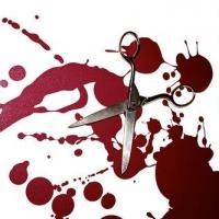В Омске осудили омича, который ножницами отрезал другу ухо