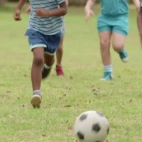 Омские семьи посоревнуются в спорте и творчесте