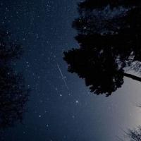 В ночь на 13 августа жители России могут наблюдать звездопад