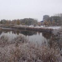 Синоптики говорят о небольшом потеплении в Омской области