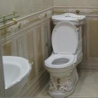 Коттедж с позолоченным унитазом продают под Омском за 50 млн рублей