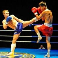 В Омске пройдут соревнования на Кубок федерации кикбоксинга