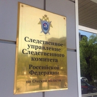 Руководителя спортивного бюджетного учреждения Омской области заключили под стражу