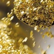 Омский завод примет участие в разработке золоторудного комбината на Чукотке