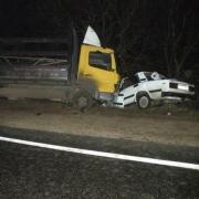 "На трассе ""Омск – Тюмень"" в результате столкновения грузовика и ""семерки"" погибли два человека"