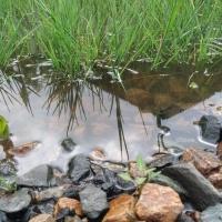 После дождя в Омской области затопило дороги и придомовые участки
